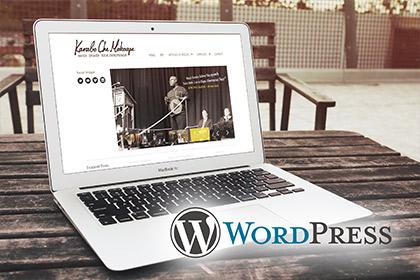 Web Design Durban WordPress